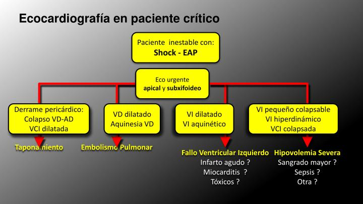 Ecocardiografía en paciente crítico