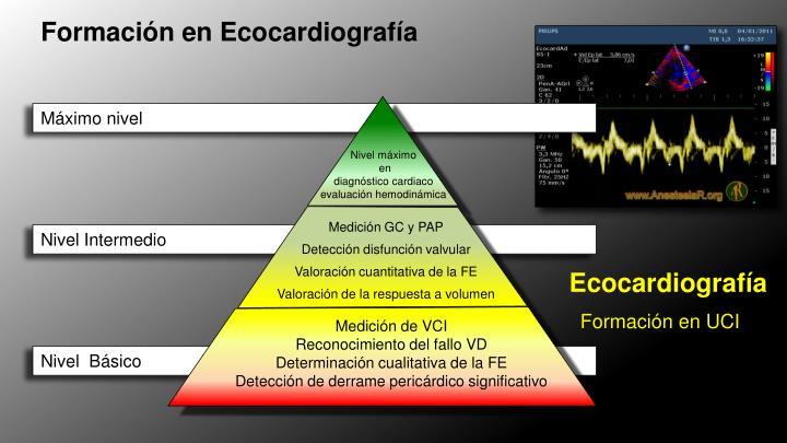 Formación en Ecocardiografía
