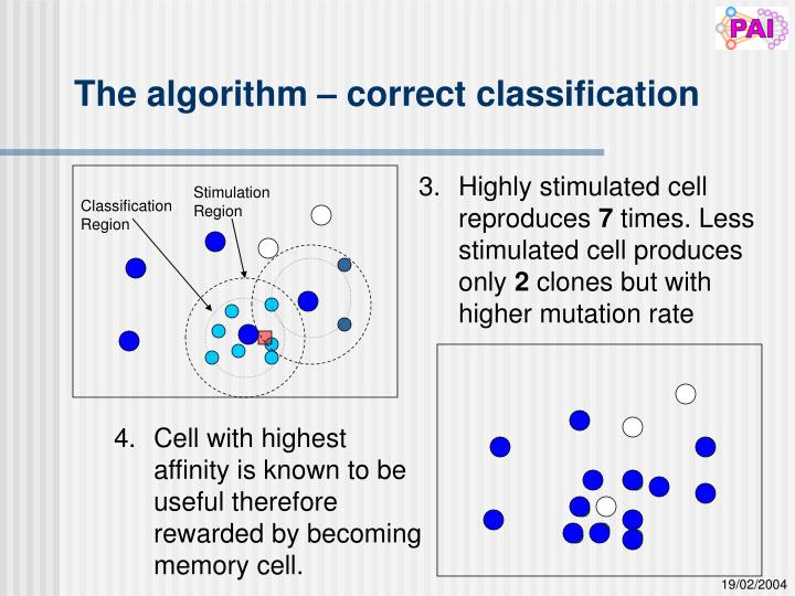 The algorithm – correct classification