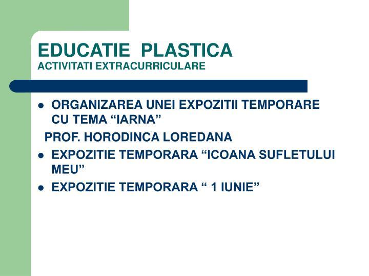 EDUCATIE  PLASTICA
