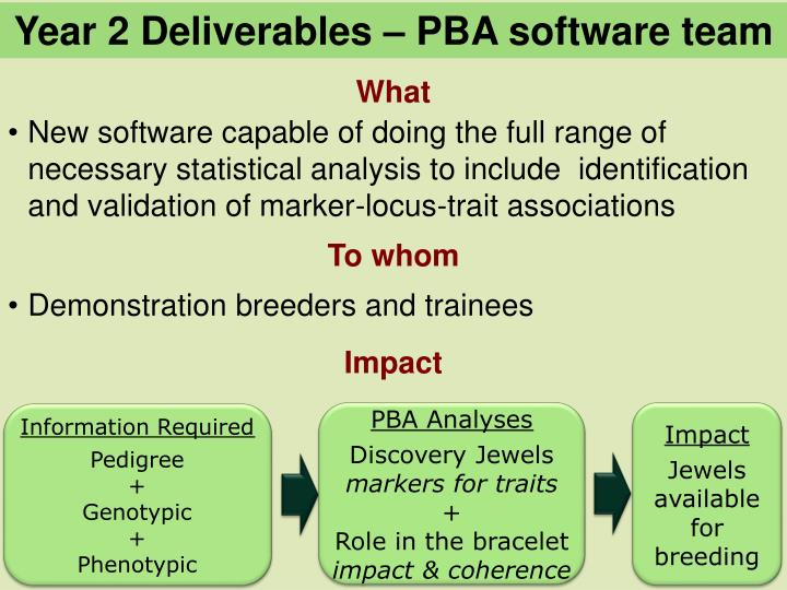 Year 2 Deliverables – PBA software team