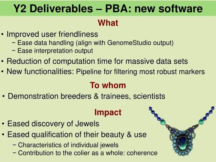 Y2 Deliverables – PBA: new software