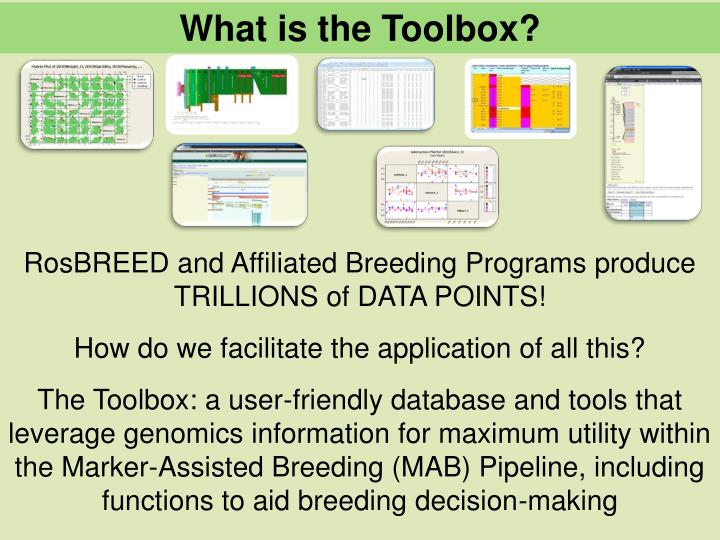 What is the Toolbox?