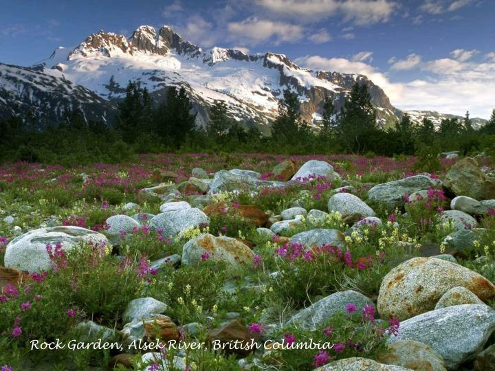 Rock Garden, Alsek River, British Columbia