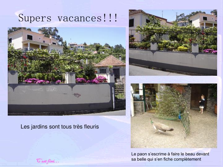 Supers vacances!!!