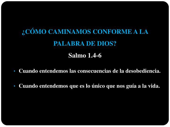 ¿CÓMO CAMINAMOS CONFORME A LA                             PALABRA DE DIOS?