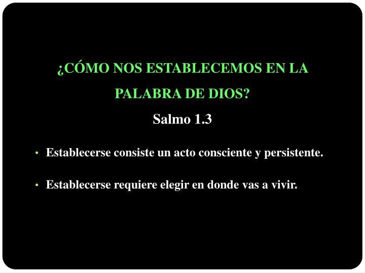 ¿CÓMO NOS ESTABLECEMOS EN LA                            PALABRA DE DIOS?
