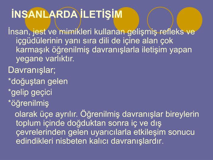 NSANLARDA LETM