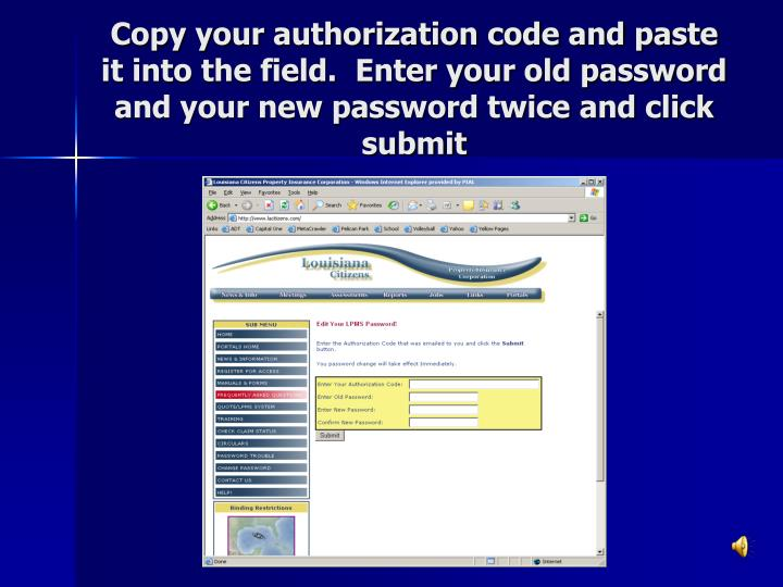 Copy your authorization code and paste it into the field.  Enter your old password and your new password twice and click submit