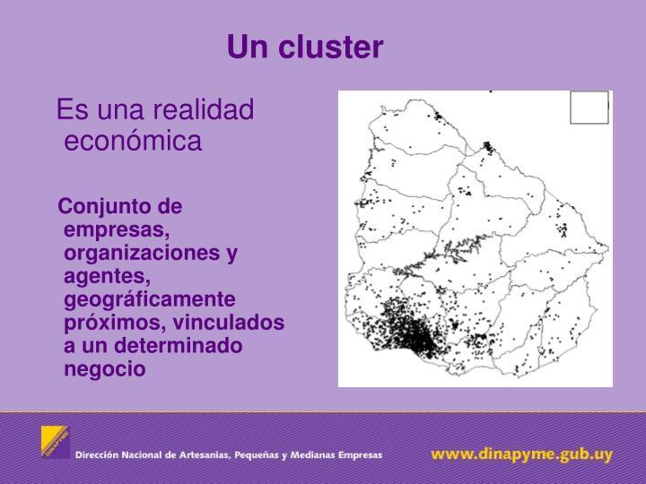 Un cluster