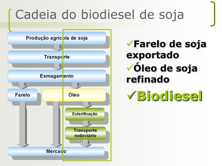 Cadeia do biodiesel de soja