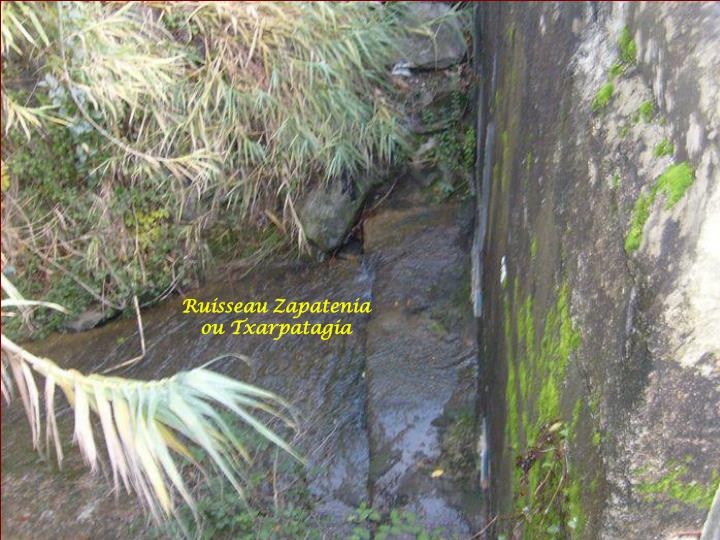 Ruisseau Zapatenia