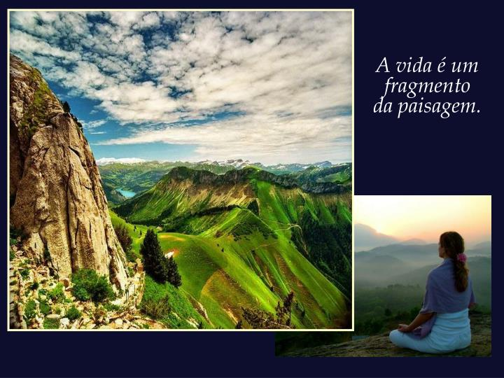 A vida é um fragmento da paisagem.