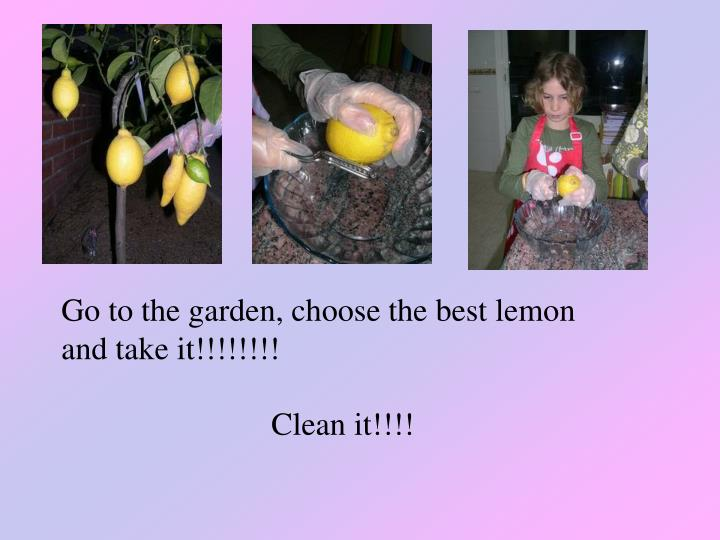 Go to the garden, choose the best lemon and take it!!!!!!!!