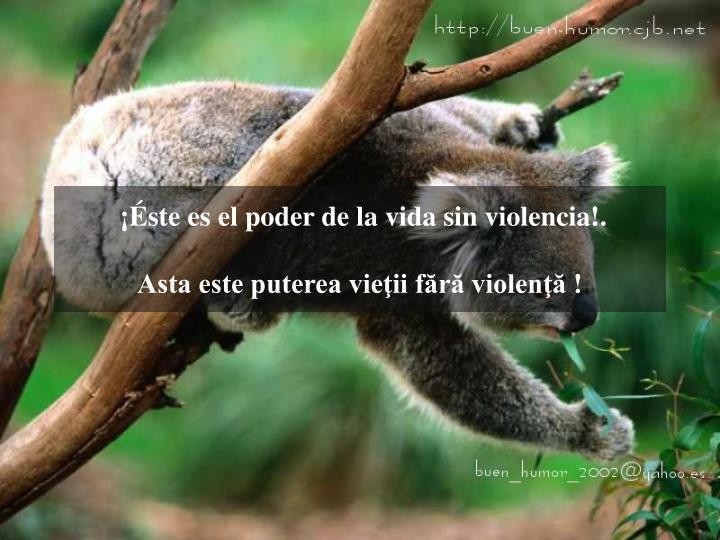 ¡Éste es el poder de la vida sin violencia!.