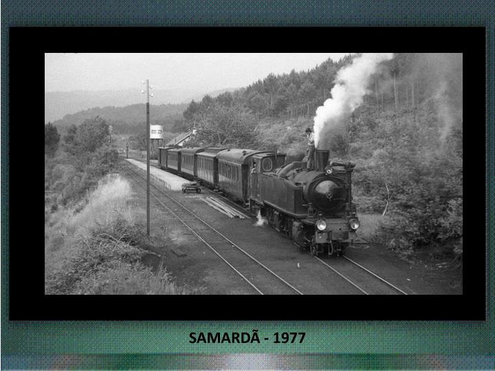 SAMARDÃ - 1977