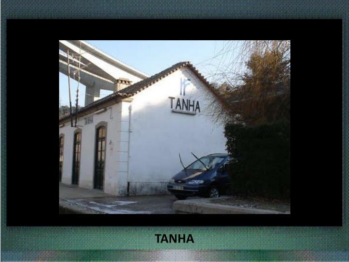 TANHA