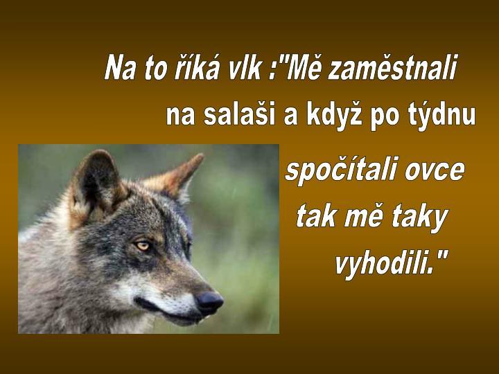 """Na to říká vlk :""""Mě zaměstnali"""