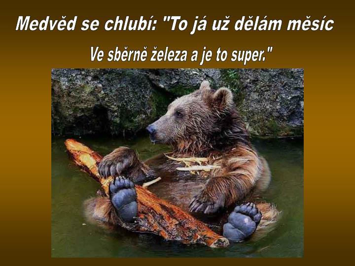 """Medvěd se chlubí: """"To já už dělám měsíc"""