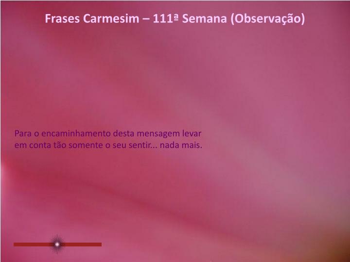 Frases Carmesim – 111ª Semana (Observação)