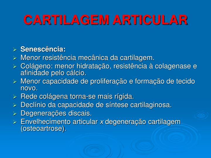 CARTILAGEM ARTICULAR