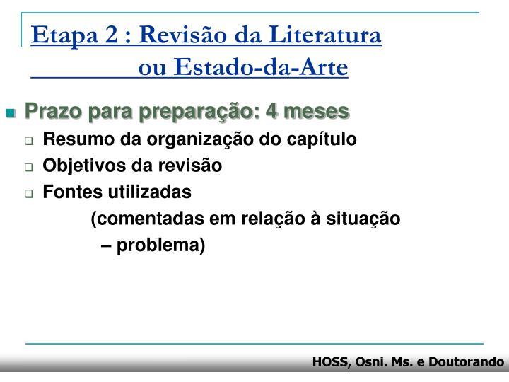 Etapa 2 : Revisão da Literatura