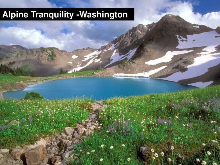 Alpine Tranquility -Washington