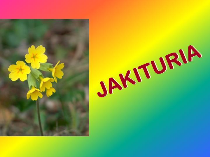 JAKITURIA