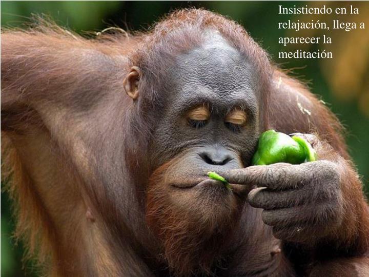 Insistiendo en la relajación, llega a aparecer la meditación