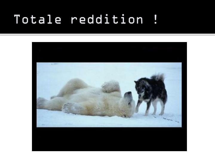 Totale reddition !