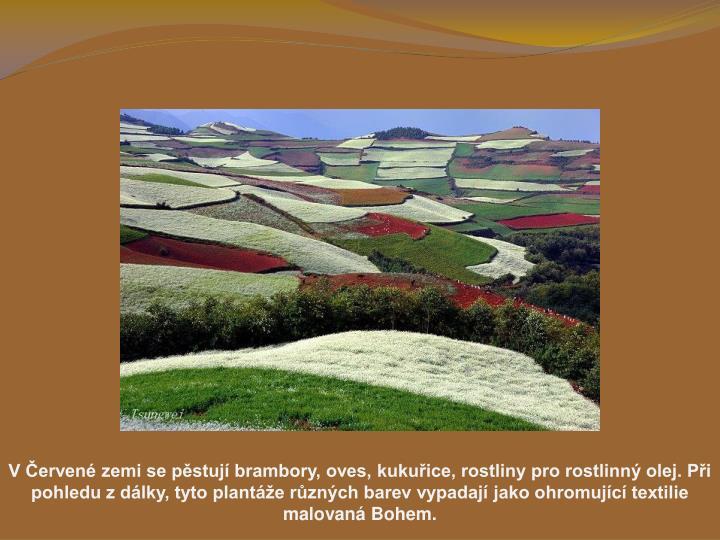 V erven zemi se pstuj brambory, oves, kukuice, rostliny pro rostlinn olej. Pi pohledu z dlky, tyto plante rznch barev vypadaj jako ohromujc textilie malovan Bohem.