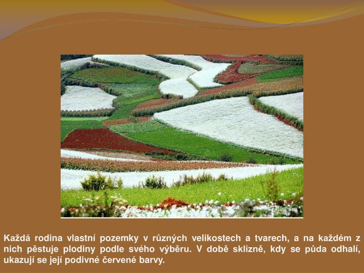 Kad rodina vlastn pozemky v rznch velikostech a tvarech, a na kadm z nich pstuje plodiny podle svho vbru. V dob sklizn, kdy se pda odhal, ukazuj se jej podivn erven barvy.
