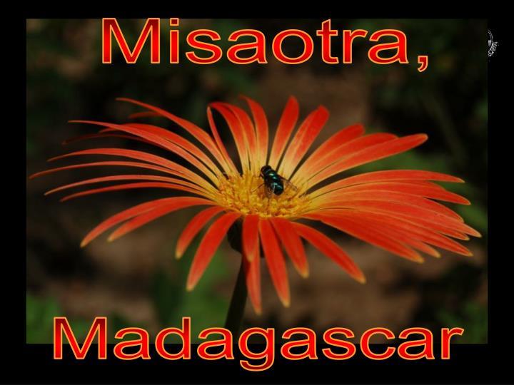 Misaotra,