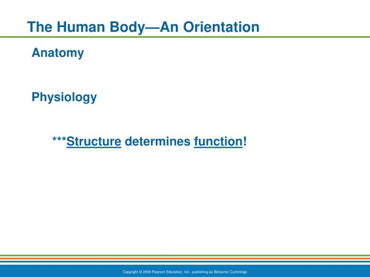 The Human Body—An Orientation