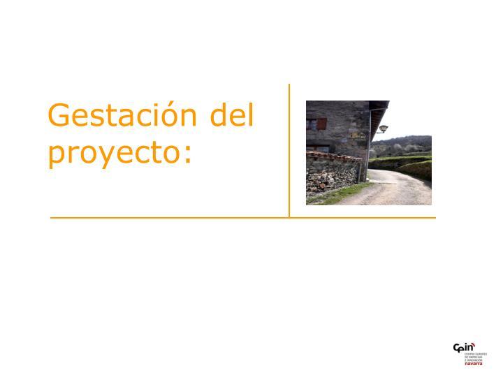 Gestación del proyecto: