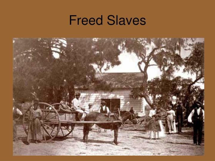 Freed Slaves