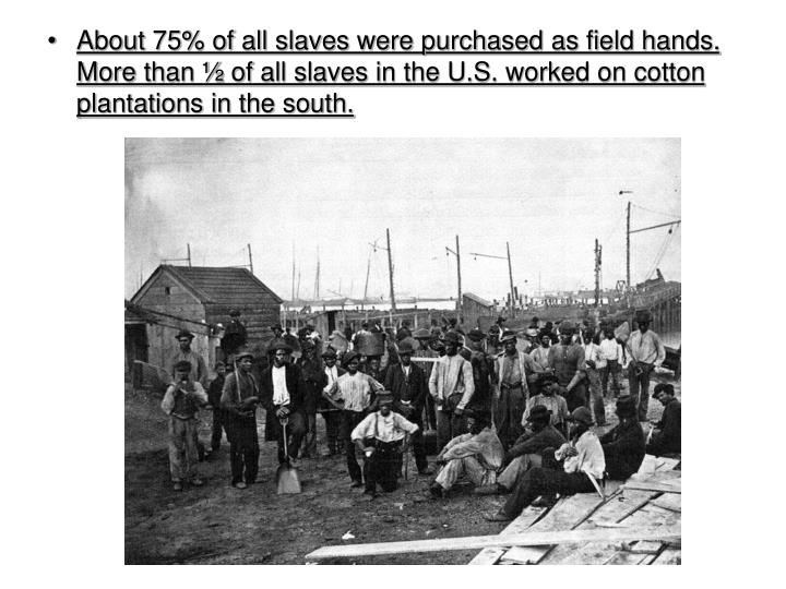 About 75% of all slaves were purchased as field hands.  More than ½ of all slaves in the U.S. worked on cotton plantations in the south.