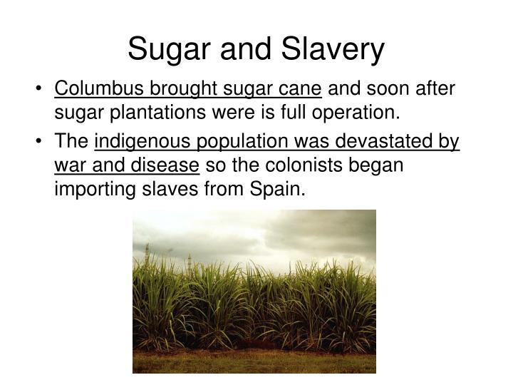 Sugar and Slavery