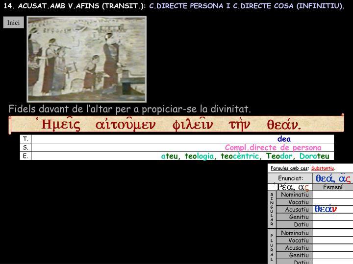 14. ACUSAT.AMB V.AFINS (TRANSIT.):