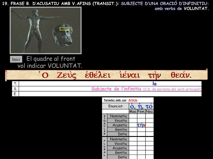19. FRASE B. D'ACUSATIU AMB V.AFINS (TRANSIT.):
