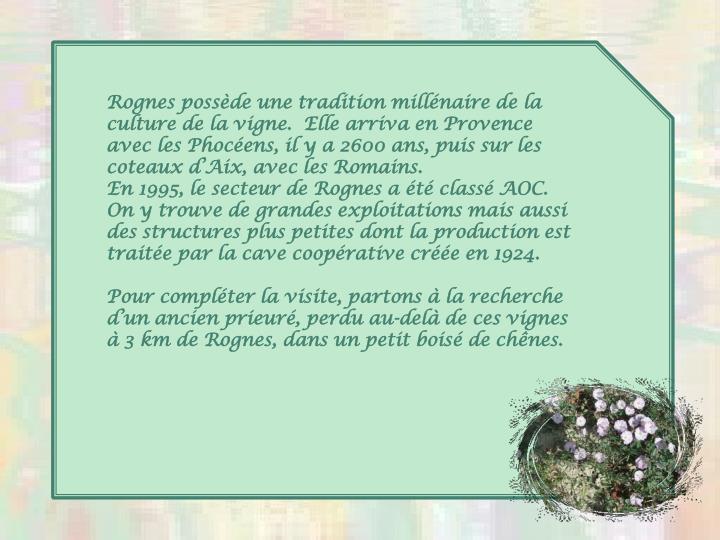 Rognes possède une tradition millénaire de la culture de la vigne.  Elle arriva en Provence avec les Phocéens, il y a 2600 ans, puis sur les coteaux d'Aix, avec les Romains.