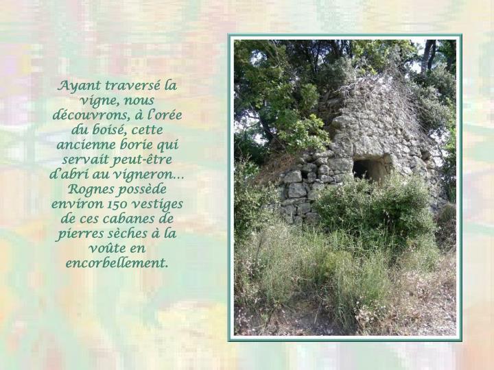 Ayant traversé la vigne, nous découvrons, à l'orée du boisé, cette ancienne borie qui servait peut-être d'abri au vigneron…  Rognes possède environ 150 vestiges de ces cabanes de pierres sèches à la voûte en encorbellement.
