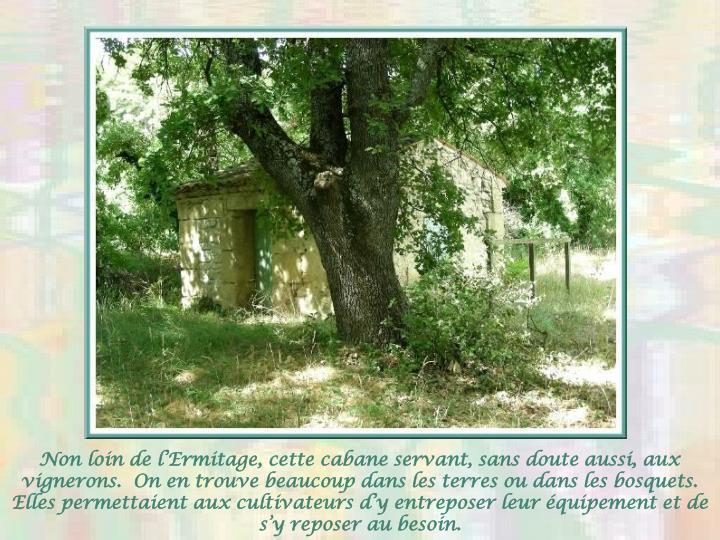 Non loin de lErmitage, cette cabane servant, sans doute aussi, aux vignerons.  On en trouve beaucoup dans les terres ou dans les bosquets.  Elles permettaient aux cultivateurs dy entreposer leur quipement et de sy reposer au besoin.