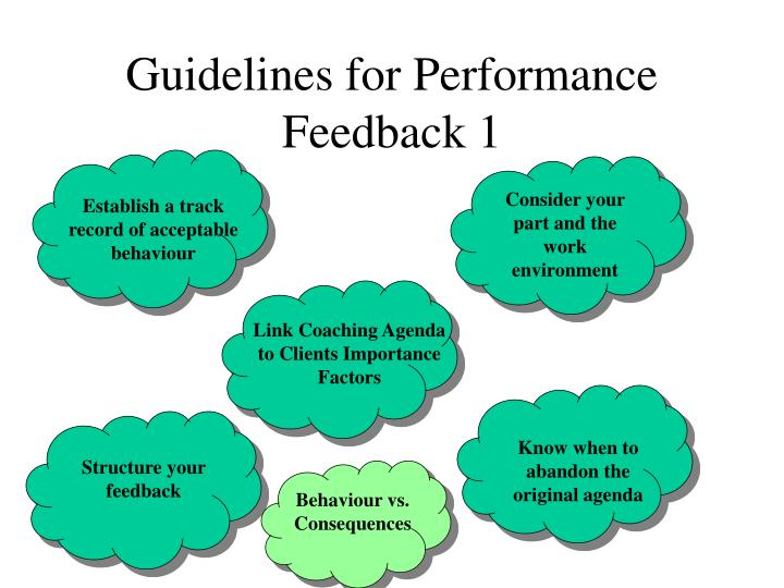 Guidelines for Performance Feedback 1