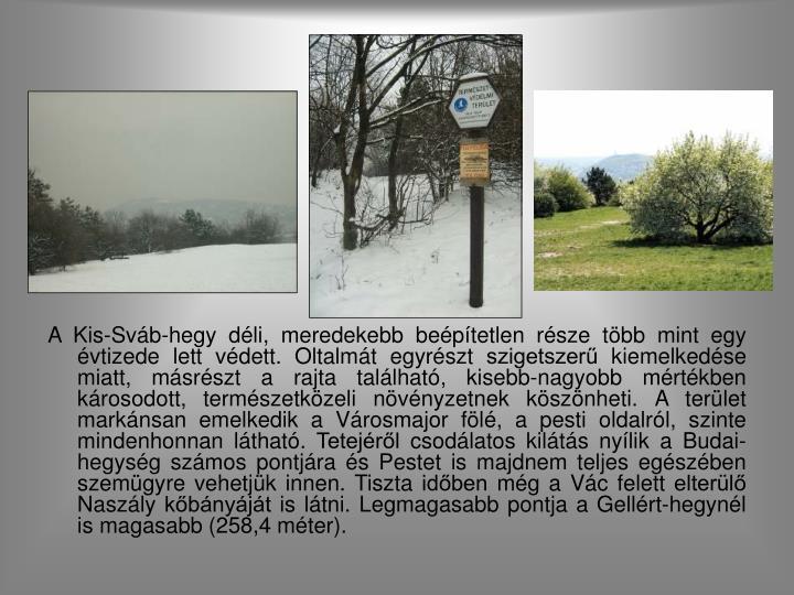 A Kis-Sváb-hegy déli, meredekebb beépítetlen része több mint egy évtizede lett védett. Oltalmát egyrészt szigetszerű kiemelkedése miatt, másrészt a rajta található, kisebb-nagyobb mértékben károsodott, természetközeli növényzetnek köszönheti. A terület markánsan emelkedik a Városmajor fölé, a pesti oldalról, szinte mindenhonnan látható. Tetejéről csodálatos kilátás nyílik a Budai-hegység számos pontjára és Pestet is majdnem teljes egészében szemügyre vehetjük innen. Tiszta időben még a Vác felett elterülő Naszály kőbányáját is látni. Legmagasabb pontja a Gellért-hegynél is magasabb (258,4 méter).