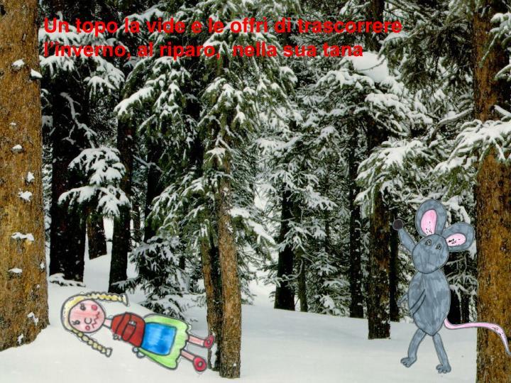 Un topo la vide e le offrì di trascorrere l'inverno, al riparo,  nella sua tana