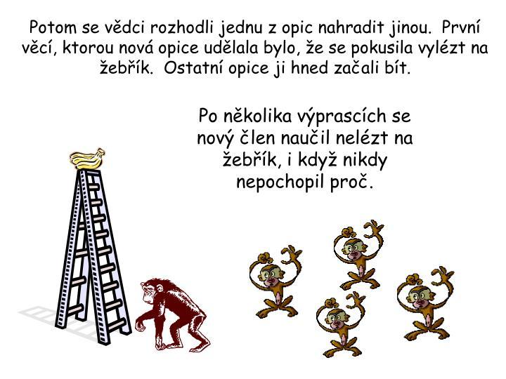 Potom se vědci rozhodli jednu z opic nahradit jinou