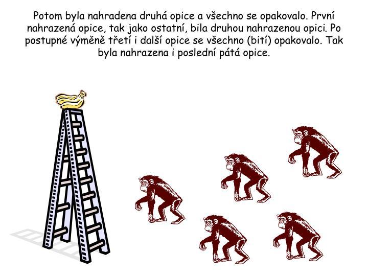 Potom byla nahradena druhá opice a všechno se opakovalo