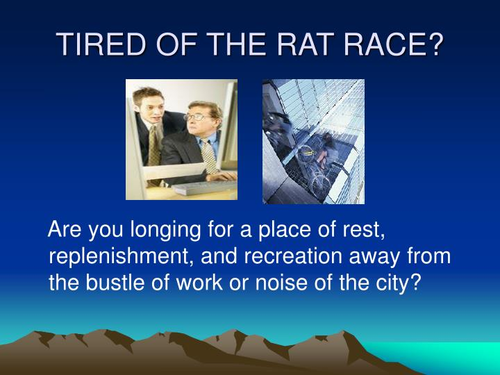TIRED OF THE RAT RACE?