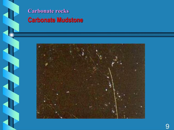 Carbonate rocks